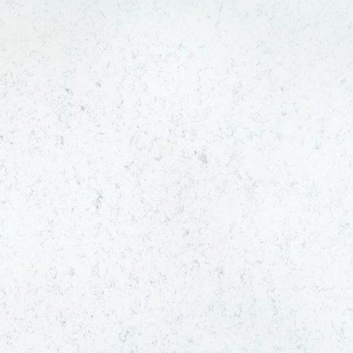 Miami Carrara